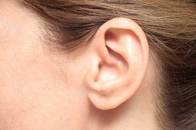 """Czy objawy COVID-19 można zobaczyć na paznokciach i uszach? Dr Sutkowski: """"Nie jest to prawdziwa informacja"""""""