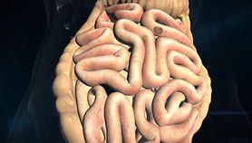 Detoksykacja okrężnicy. Dowiedz się, jak ją przeprowadzić (WIDEO)