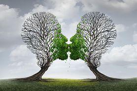 Rozwój związku a psychoterapia par