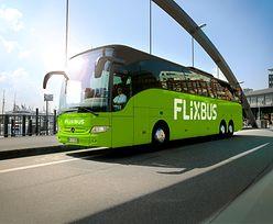 Wakacje 2021. FlixBus poszerza ofertę zielonych autobusów. Od 2 czerwca nowe połączenia