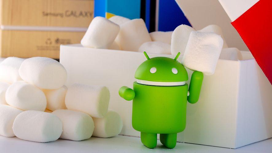 Aplikacja Kontakty Google otrzymała nowy wygląd. To koniec kolorowych pasków