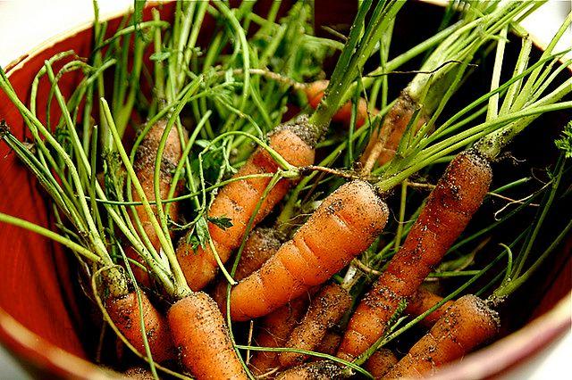 Produkty spożywcze dla cery trądzikowej - marchewka