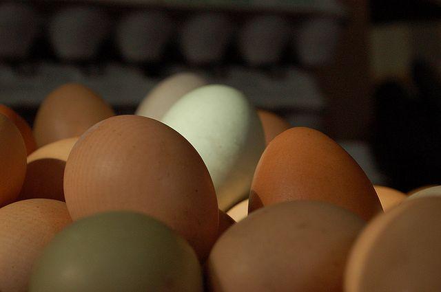 Produkty spożywcze dla cery trądzikowej - jajka