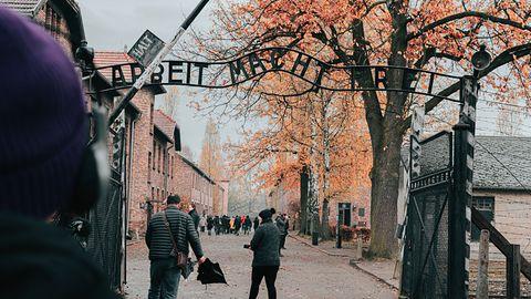 Auschwitz na bożonarodzeniowej dekoracji. Amazon reaguje