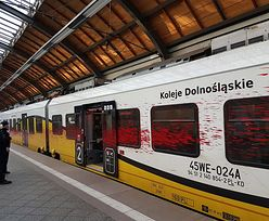 Spryskał farbą pociąg pędzący 130 km/h. 5 tys. zł. za pomoc w ujęciu wandala