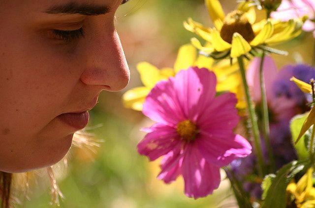 Wąchanie kompozycji zapachowej