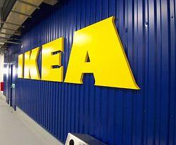 IKEA zapłaci ogromną karę. Wyszło na jaw, co robiła pracownikom