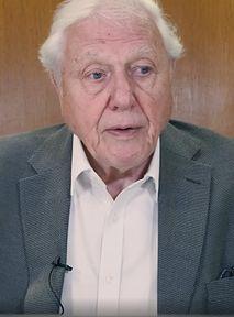 4-latek zapytał Davida Attenborougha, czy ludzkość wyginie... i dostał odpowiedź