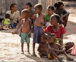 Katastrofalna susza na Madagaskarze. 400 tys. osobom grozi głód