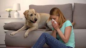 Meble tapicerowane nie dla alergików?