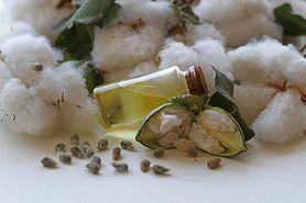 Olej z nasion bawełny – właściwości i zastosowanie w kosmetyce