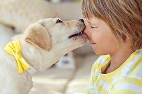 Dzieci, które mają zwierzęta, są zdrowsze i szczuplejsze