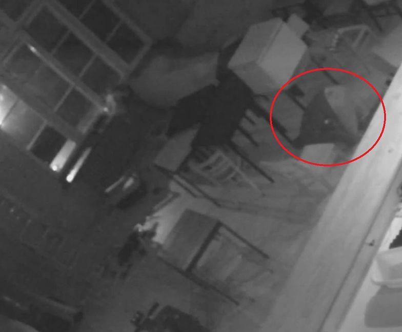 Mężczyźni włamali się do restauracji. Kiedy na miejsce przyjechała policja, rabusie udawali, że śpią.