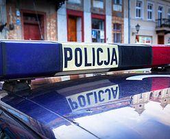 W Krośnie napadnięto taksówkarza. Powodem był pies