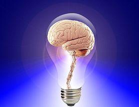 Która część mózgu podejmuje twoje decyzje?