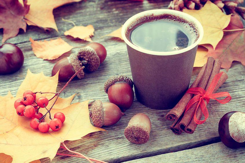 Z żołędzi można przygotować pyszną kawę