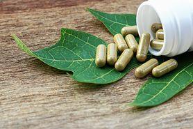 Leki roślinne jak antybiotyki