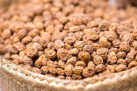 Cibora jadalna – właściwości lecznicze