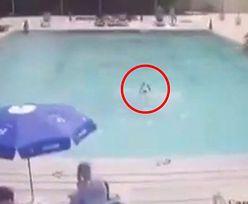 8-latek utopił się w basenie na oczach rodziców. Wstrząsające nagranie