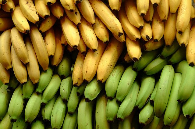 Żółte i zielone banany