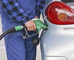 Ceny paliw w dół. Tak tanio w tym roku jeszcze nie było