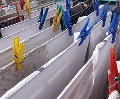 Suszysz pranie w domu? To szkodliwe dla zdrowia