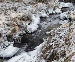 Zbadali wodę w rzece. Wstrząsające odkrycie na Dolnym Śląsku