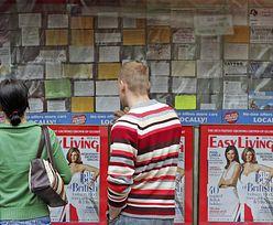 Coraz mniej Polaków wyjeżdża do pracy w Wielkiej Brytanii. Żadna inna nacja nie odnotowała takiego spadku