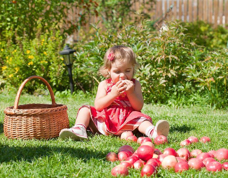 Przepis na ocet jabłkowy domowej roboty