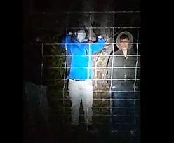 Szturm na polską granicę. Straż Graniczna pokazała nagranie