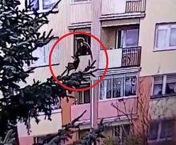 Wnuk wyrzucił babcię przez balkon. Wszystko zarejestrowała kamera monitoringu