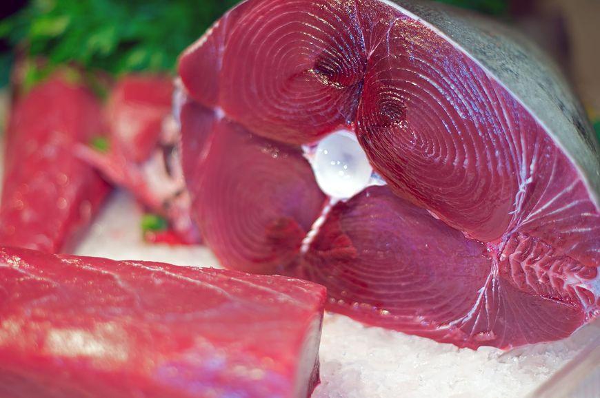 Czy tuńczyk ma w sobie rtęć?