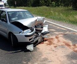Łoś wbiegł na drogę. Efekt: trzy zdewastowane auta i ranni