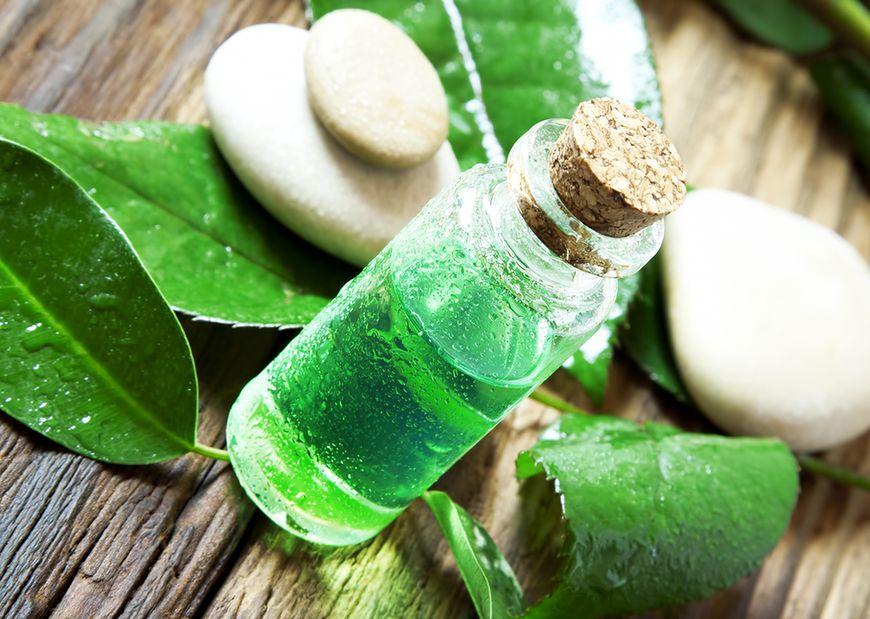 Olej z drzewka herbacianego na grzybicę paznokci