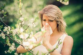 Poznaj 7 najczęstszych alergenów, które mogą ci zagrozić