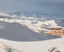 Pustynia pokryła się śniegiem. Ludzie przecierają oczy ze zdumienia