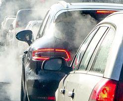 Nowy znak drogowy na wjazdach do stref ekologicznych. Za złamanie przepisu 500 zł mandatu
