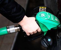 Spadek cen paliw na stacjach. Będzie jeszcze taniej