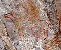 Brazylijska telewizja zniszczyła malowidła sprzed 11 tysięcy lat. Teraz zapłaci karę