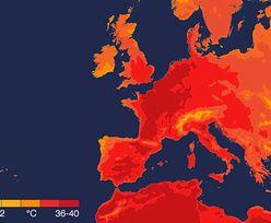 Fala upałów w Europie. W Niemczech, Holandii i Belgii padły rekordy