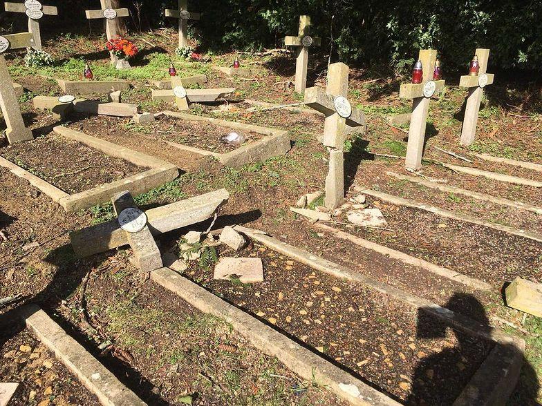 W Anglii zniszczyli groby polskich bohaterów wojennych