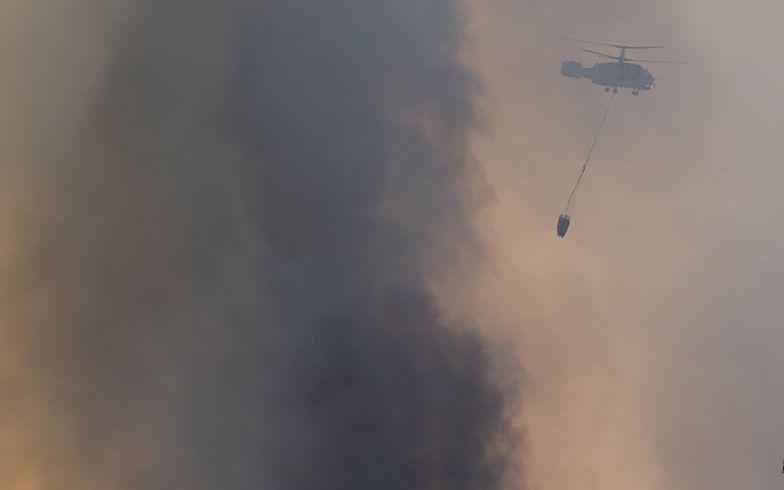 Rozbiła się jedna z maszyn, pomagająca strażakom w walce z pożarami lasów