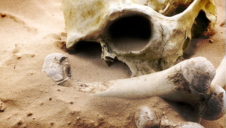 Makabryczne odkrycie w Meksyku