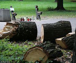 Dramat w Parku Praskim, zginęło 6-miesięczne dziecko. Zarząd Zieleni wyjaśnia, jak do tego doszło