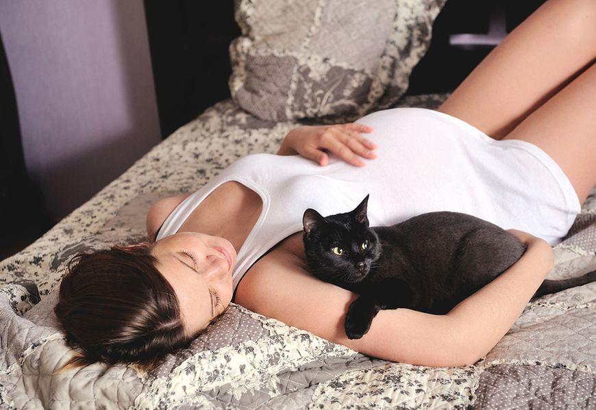 Głaskanie kotów w czasie ciąży