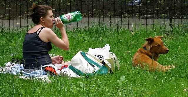 Właścicielka z psem w parku