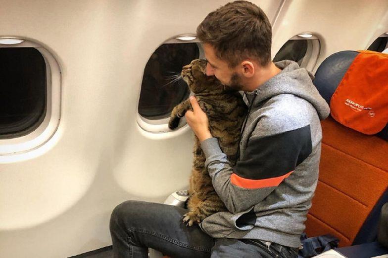 Pasażer oszukał linie lotnicze. Przemycił do samolotu grubego kota