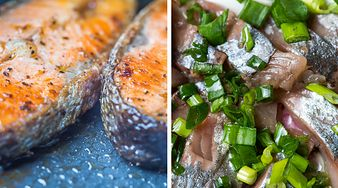 Ryby najczęściej wybierane przez Polaków i ich właściwości odżywcze