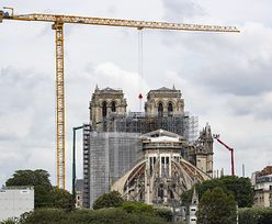 Rusztowanie ma 40 tys. elementów. Odbudowa katedry Notre Dame wchodzi w decydującą fazę