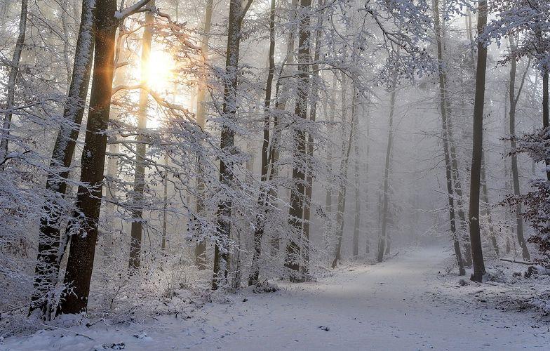 Pogoda - sylwester i Nowy Rok. Gdzieniegdzie nawet 15 cm śniegu!